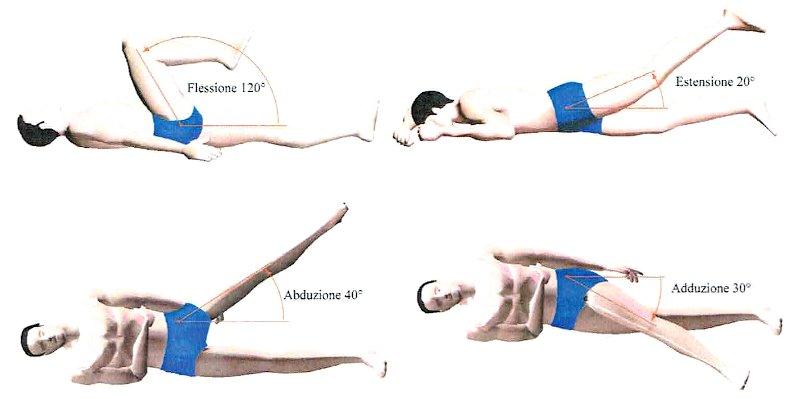 Movimenti anca. Schema movimenti articolazione dell'anca